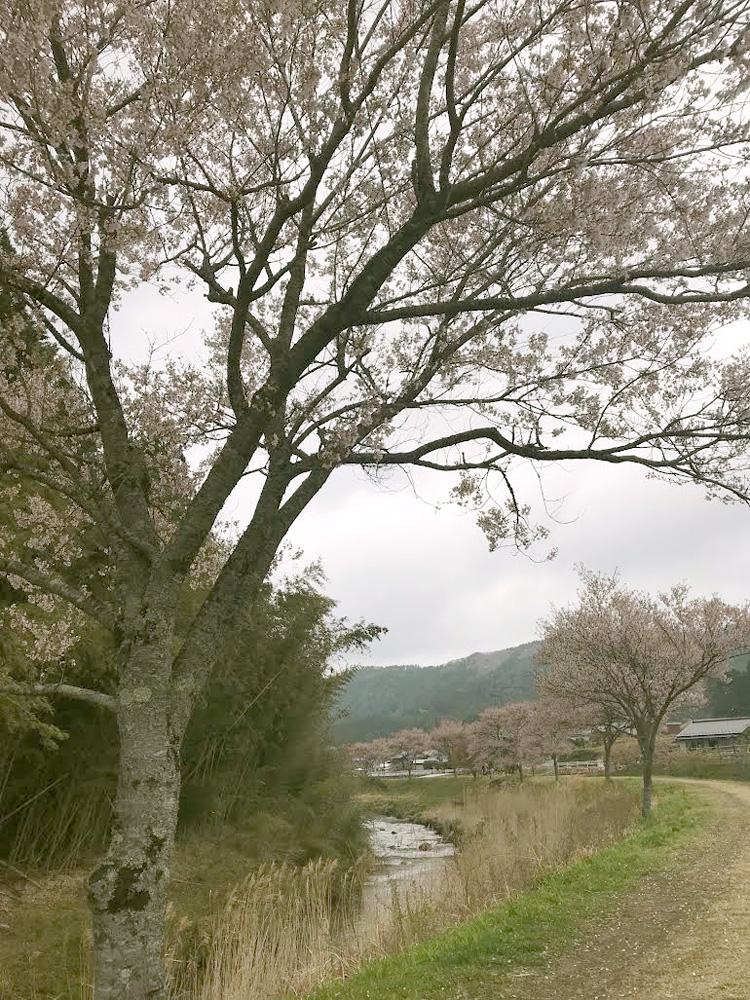 豊橋・豊川・田原・新城・蒲郡【アイスタイルデザイン】取材日記